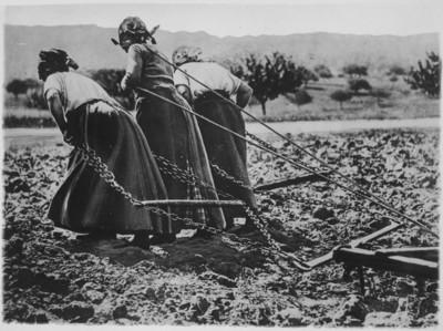les femmes aux champs (photo de propagande américaine)