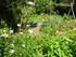 Les jardins de Montpellier (1)