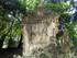 Les jardins de Montpellier (2)