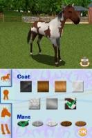 Screenshot de Riding Academy 2