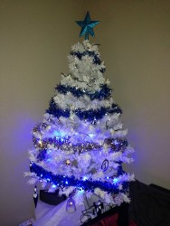 Notre Sapin version 2013