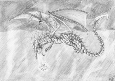 Dragon 39 art - Aile de dragon dessin ...