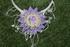 collier fleur mauve