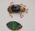 collier scarabée