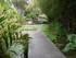 Jardin de Balata: la Mare Japonaise