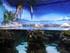 Le récif de corail tropical et la Mer de