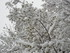 La neige en Italie