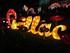 3ème FESTIVAL DES LANTERNES A GAILLAC LE