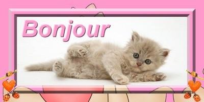 Bon Samedi Fanfan76144554642527_art