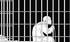 Retraités en prison ...