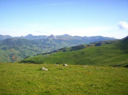 auloin le Puy Mary et le Puy Griou