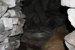 interieur d'un orri