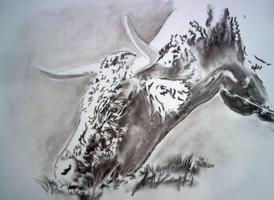 dessin crayon et fusain