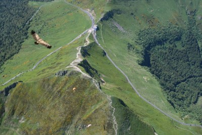 Le Puy Mary Vu du ciel ( en parapente en compagnie d'un vautour)