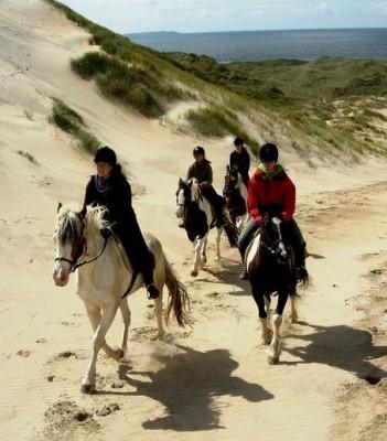 Notre petit groupe dans les dunes irlandaises ! =)