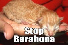 stop barahona