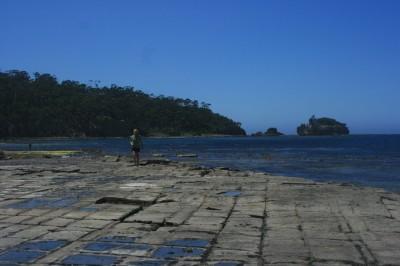 La plage qudrillée de Settled Pavement