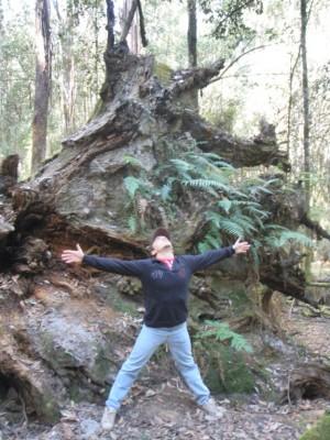 Mathieu et le big Tree