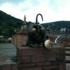 Art' 437ème : Heidelberg