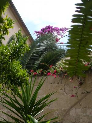 Leroy Merlin Salle De Bain Abri Jardin Bois France