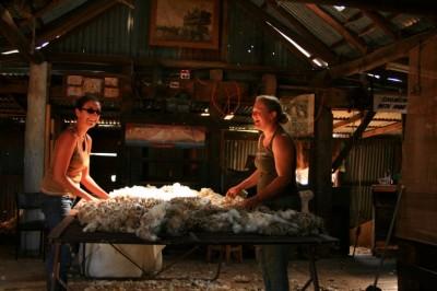 Judith et Moi, nettoyant la laine