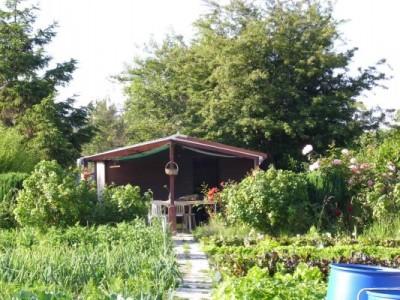 Jardins ouvriers des Basses Communes - Calais