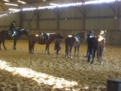 centre equestre brou