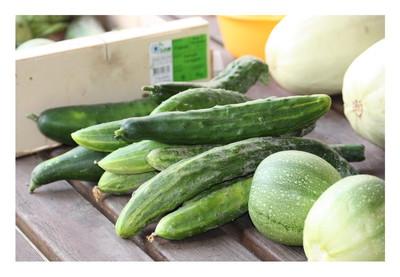 Quels Legumes Aiment Le Marc De Caf Ef Bf Bd