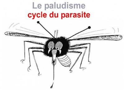 Lodeur de pour la bouche la conséquence des parasites