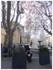 Avignon: une naissance insolit