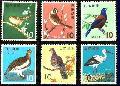 Quelques oiseaux du Japon