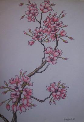 pin pictures of tatouages arabesque fleurs de cerisier fleur on pinterest. Black Bedroom Furniture Sets. Home Design Ideas
