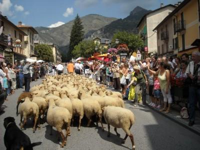 les bergers et leurs moutons ouvrent la marche