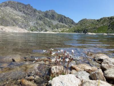 L'eau est claire, fraiche : le coin idéal pour la pause pique-nique!