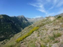 Un paysage de rocailles qui reste très fleuri et très coloré.
