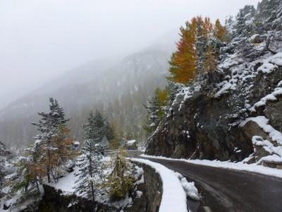 Le flamboyant de l'automne sous un manteau d'hiver.