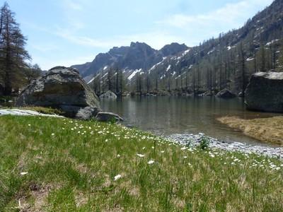 Lac vert de Fontanalbe.
