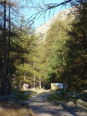 1h de marche pour atteindre la limite du Parc du Mercantour.