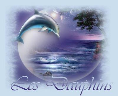 PLOUM? le dauphin