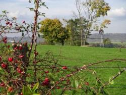 paysage d'automne du Saulnois